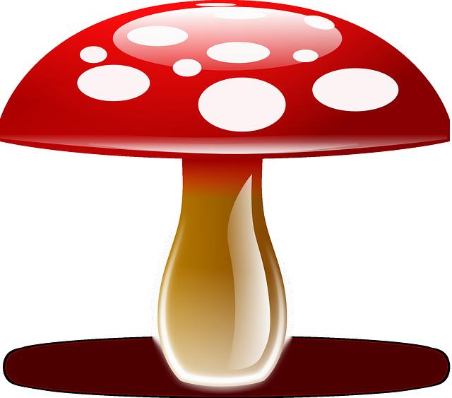 Mese a marketingről és a pöttyös gombákról